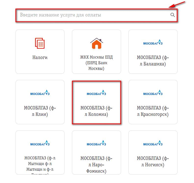 строка для ввода названия организации